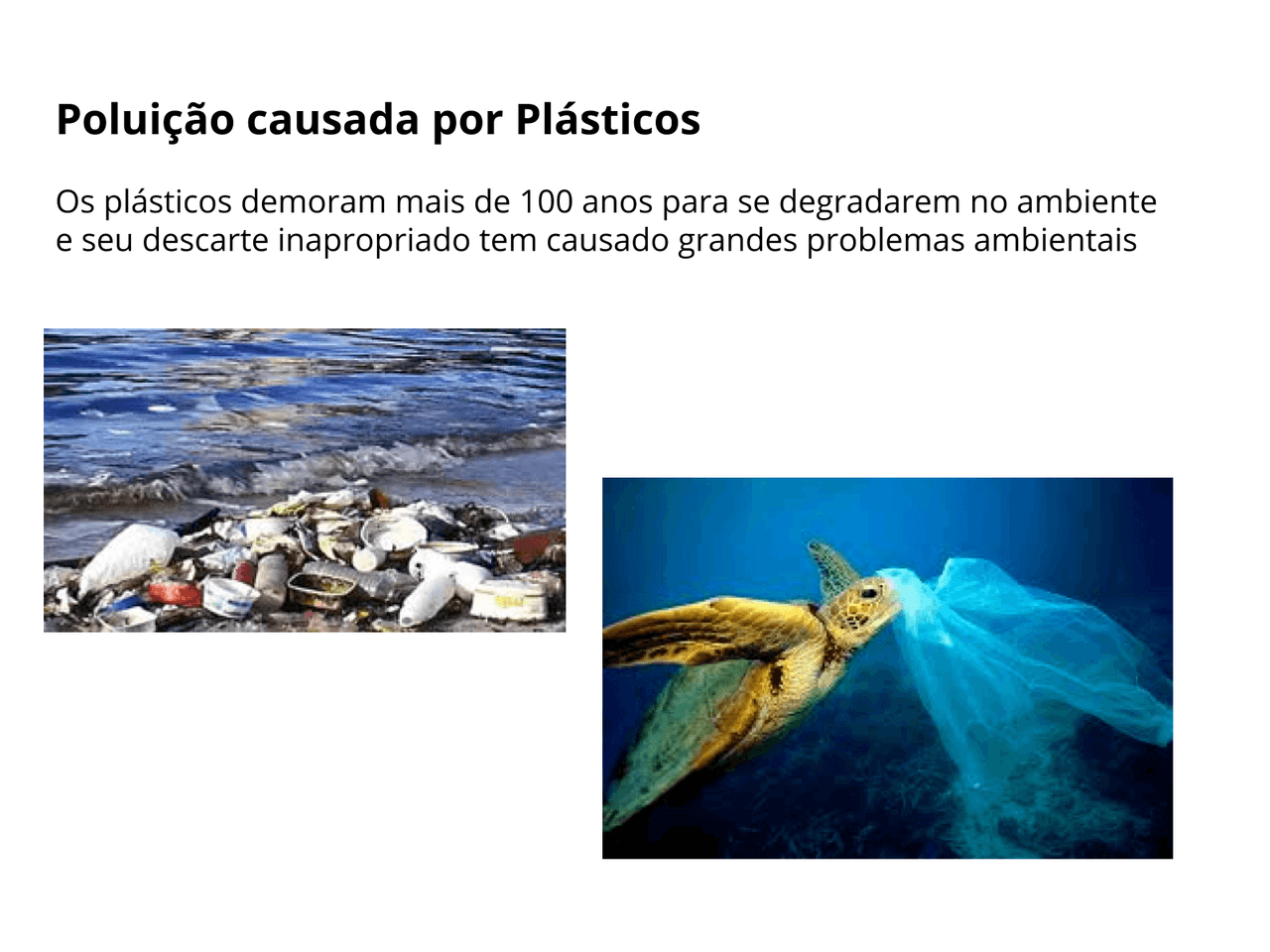 Plásticos Biodegradáveis e Oxibiodegradáveis