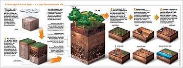 Infográfico sobre a formação do solo