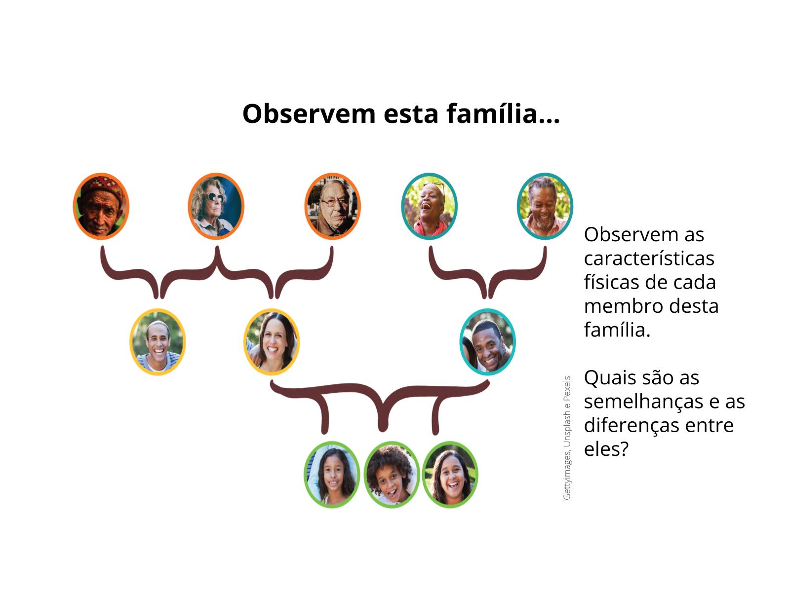 Compreensão da hereditariedade