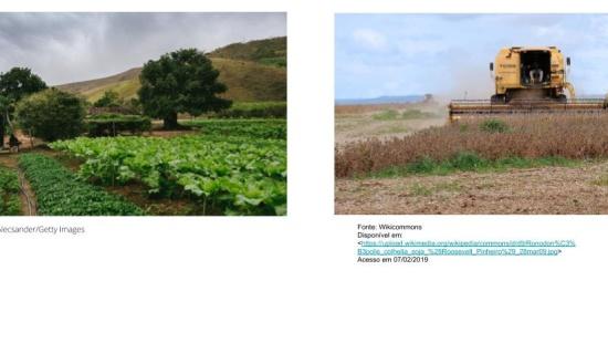 Características da produção agrícola latino americana