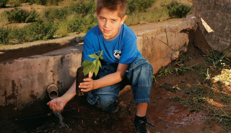 Projeto ambiental: alunos da EM Prof. Veneza recuperam o cerrado em Divinópolis. Foto: Maisa Prado