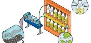 Ilustração representando o fotobiorreator criado pelas alunas