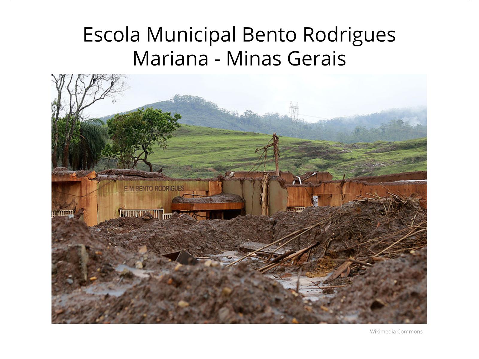 Mariana: Os males do desenvolvimento