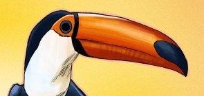 Atividade: o que o bico dos pássaros ensina sobre o que eles comem?