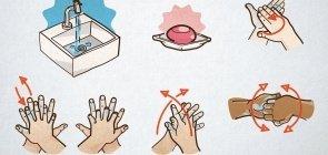 Para baixar: guia para lavar as mãos corretamente