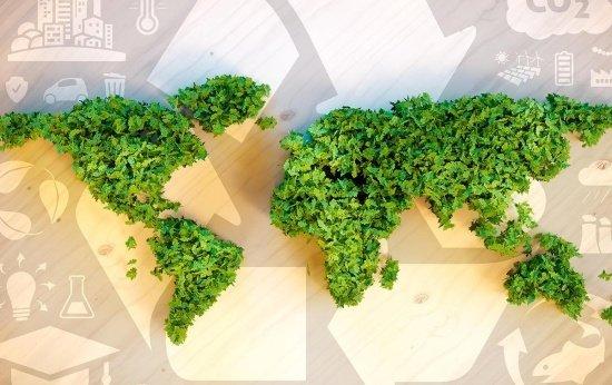 Desenvolvimento sustentável pode ser aplicado ao currículo