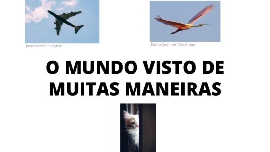 PONTOS DE VISTA - VISÃO OBLÍQUA E VISÃO VERTICAL