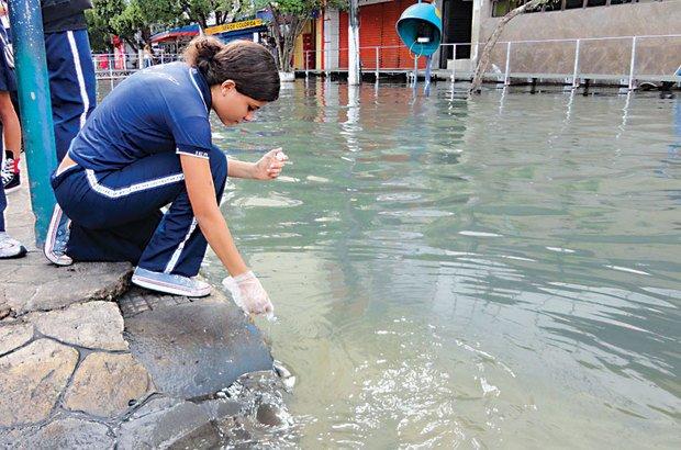 Em Manaus, os alunos coletaram e analisaram água da região alagada pela cheia do Rio Negro. Arquivo pessoal/Eunice Carvalho Gomes