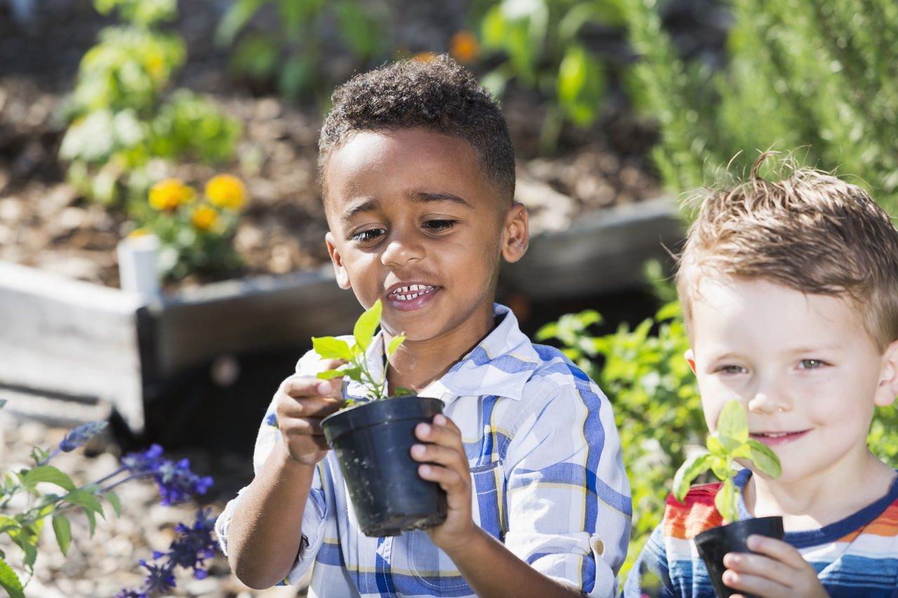 Meninos com pequenos vasos de plantas nas mãos em meio a uma horta