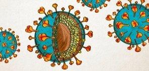 PÔSTER: explore cada nanômetro de um coronavírus