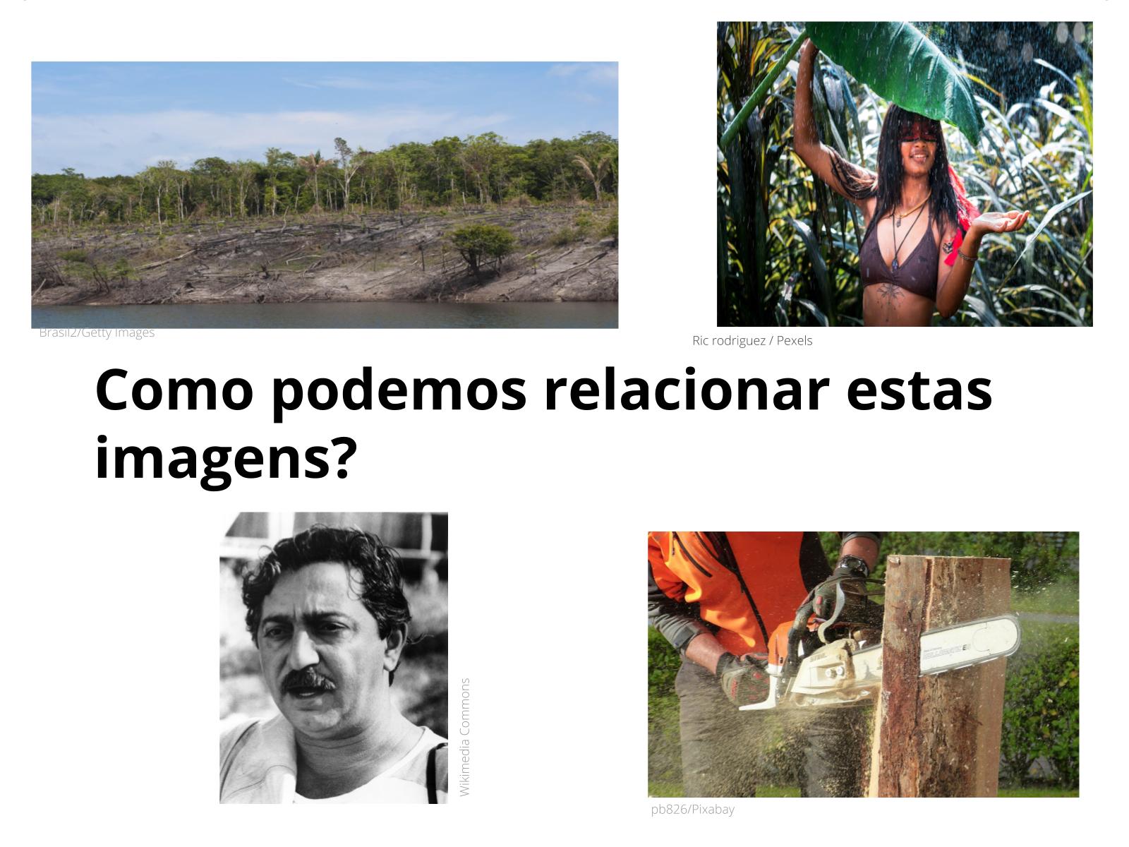 A preservação do meio ambiente: um retorno aos princípios dos povos indígenas