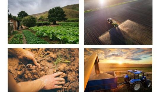 Modernização das atividades agrícolas