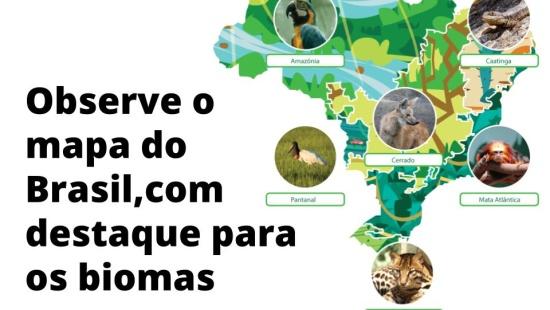 O mapa do Brasil em diferentes Temas