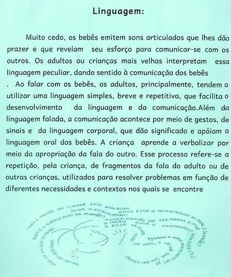 A entrada no mundo da linguagem