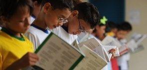 A alfabetização no Brasil não avança. O Pnaic falhou?