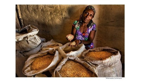 Os modos de vida das comunidades remanescentes de quilombo e seus territórios
