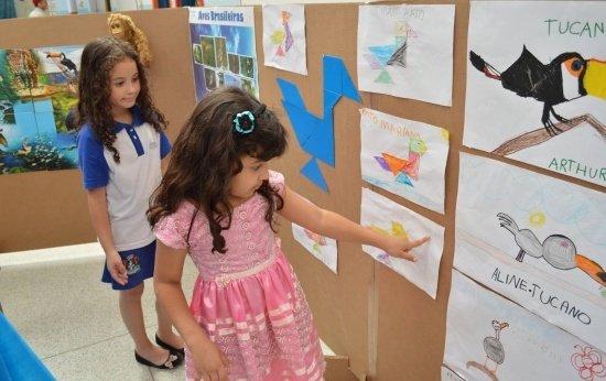 7 dicas para implementar a pedagogia de projetos em sua escola