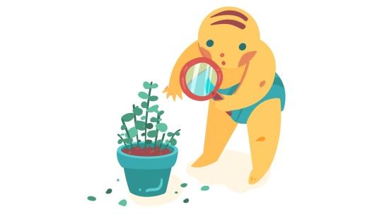 O jardim de chás: brincadeiras com bebês despertando o olhar