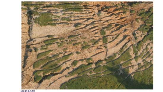 Ação antrópica e a erosão do solo