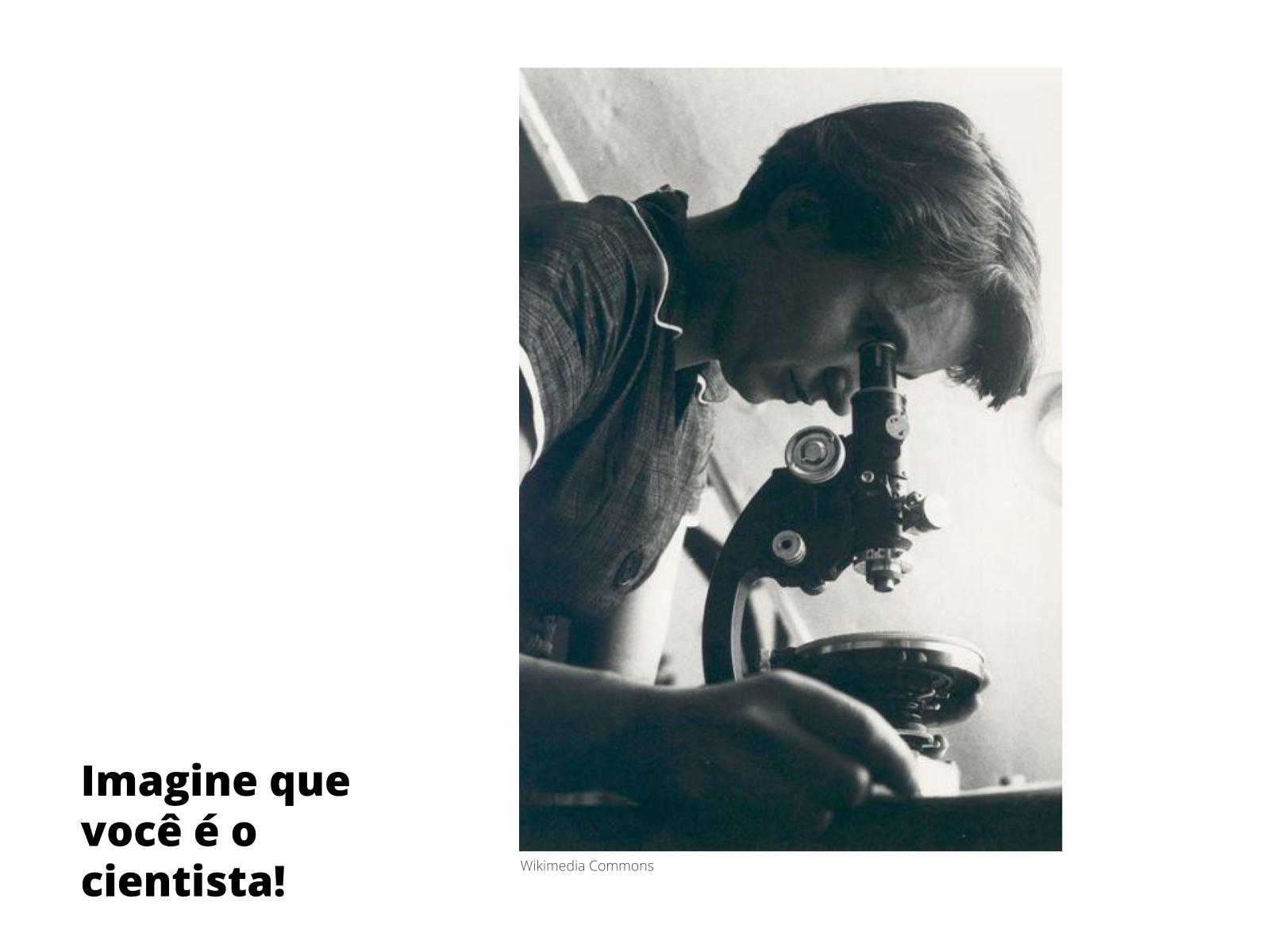 Artigo de divulgação científica: um convite à produção textual