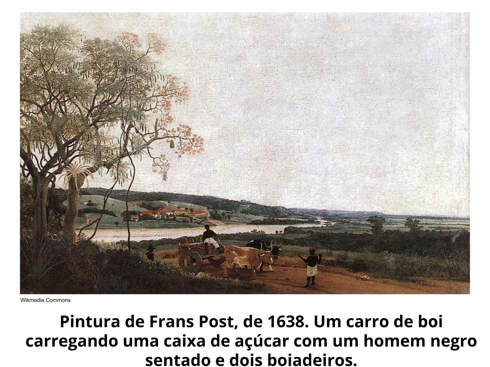 A importância da pecuária na expansão territorial da América portuguesa