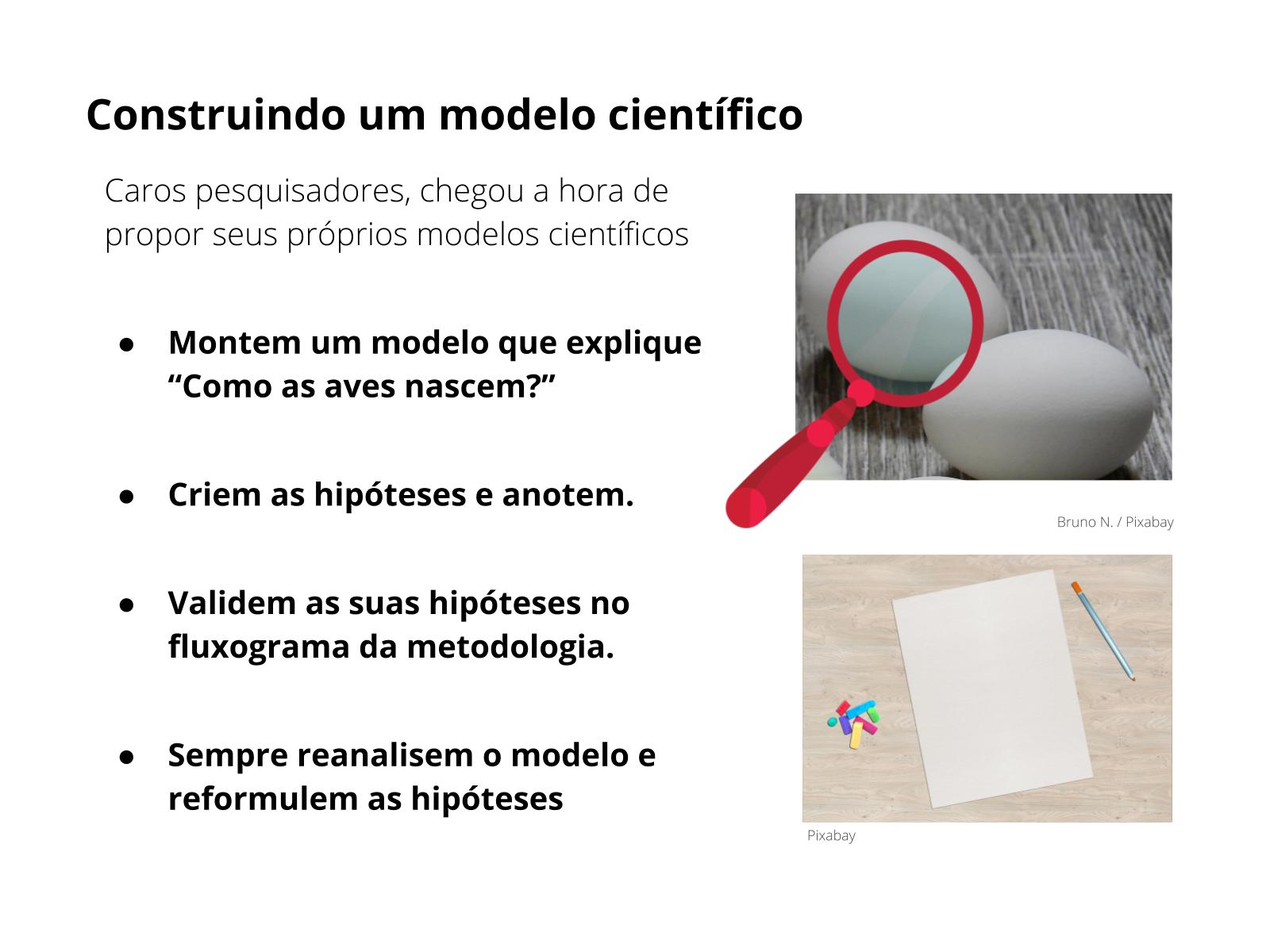 Método científico na construção de modelos