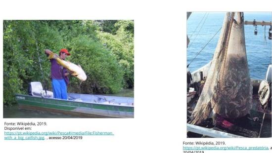 Direito à água - povos ribeirinhos e pescadores artesanais