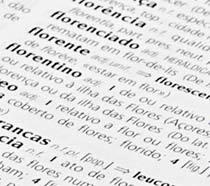 O mais recente dicionário da língua portuguesa, o Houaiss, lista 400 mil palavras. Foto: Pedro Rubens.