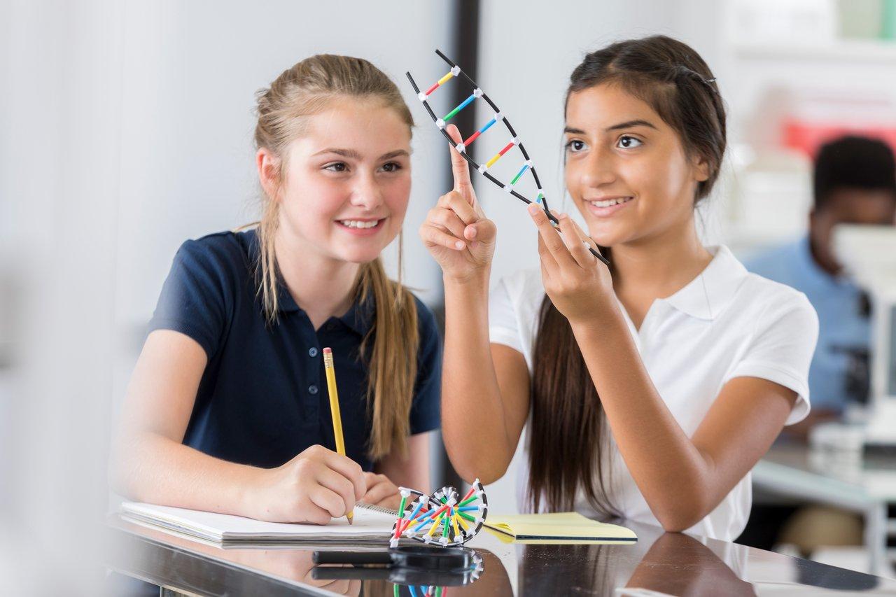 Meninas brincam com modelo matemático enquanto estudam