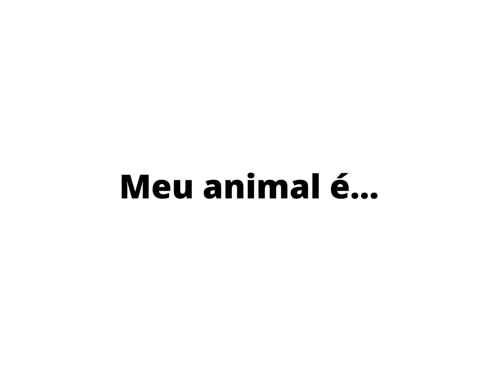 Meu animal é… - Adjetivos