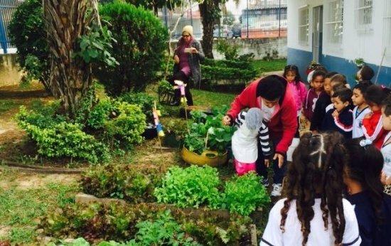 Conheci a horta de um lindo projeto em uma escola vizinha