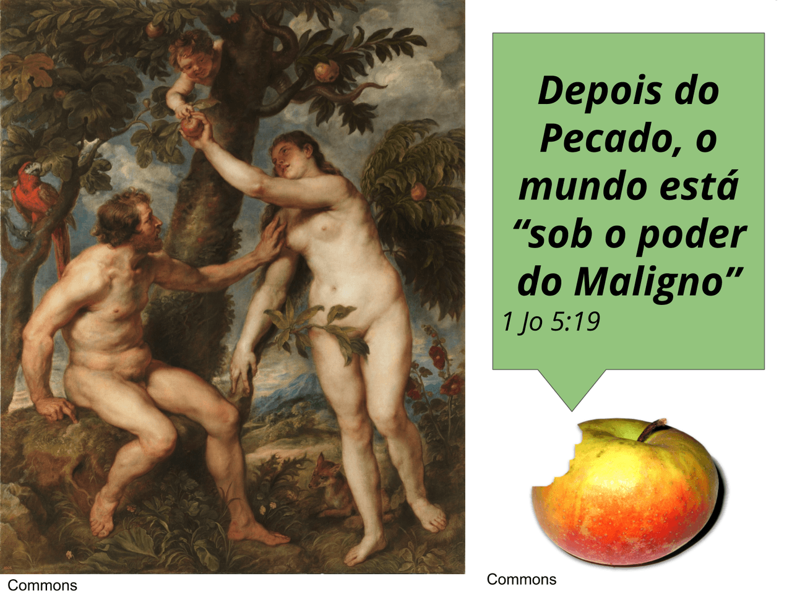 A Inquisição portuguesa no Brasil