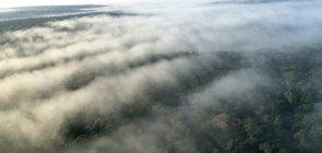 Leve os rios voadores da Amazônia para a aula de Geografia