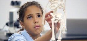 Veja planos de aula para trabalhar com o corpo humano da Educação Infantil até o Fundamental 2
