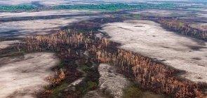 Amazônia: Fotos, fichas e dados para entender os incêndios de 2020 e abordá-los nas aulas