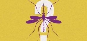 Dengue: o que você não sabe