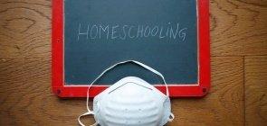Um jabuti no processo legislativo: o ensino domiciliar