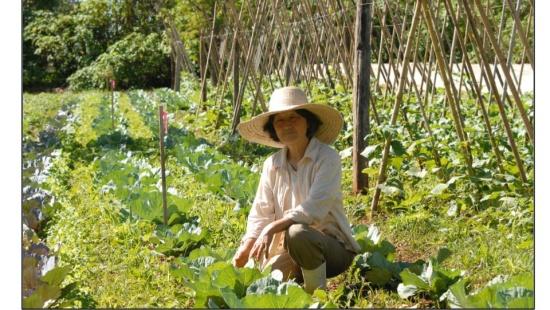 Agricultura familiar e questão agrária