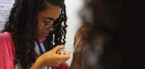 Ensino Médio na BNCC: como desenvolver propostas em sala