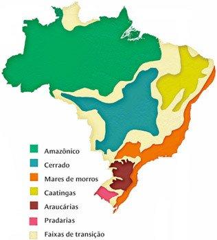 O que são os domínios morfoclimáticos brasileiros. Cássio Bittencourt