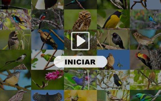 Aplicativo Aves do Brasil