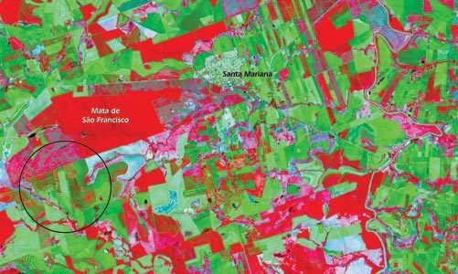 Áreas agrícolas. Nasa/Ed. Oficina de Textos