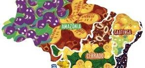 Mapa do Brasil ilustrado com as frutas típicas de cada bioma