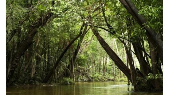Impactos Ambientais relacionados ao uso da água