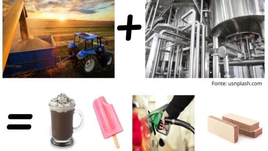 A agroindústria e a modernização do campo no Brasil