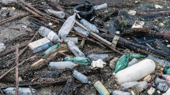 Impactos Ambientais no Brasil