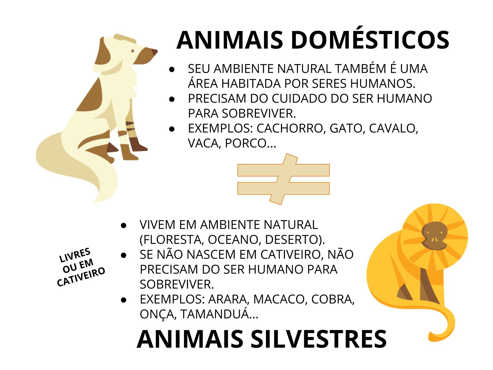 O Mundo Animal: Animais Domésticos e Silvestres