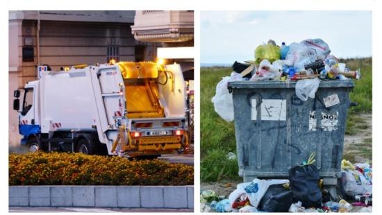 O descarte do lixo orgânico