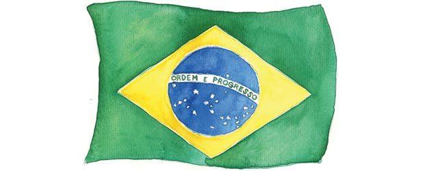 Bandeira brasileira. Ilustração: Liana Chiapinotto