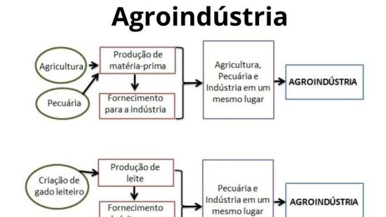 Agroindústria e a integração entre o campo e a cidade